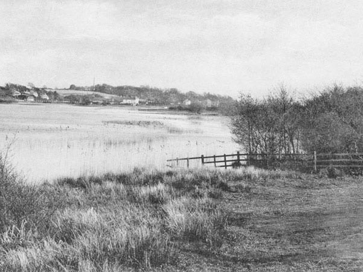 1905 View to Walhampton